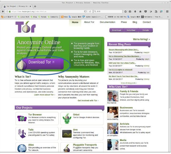 Tor1.jpg